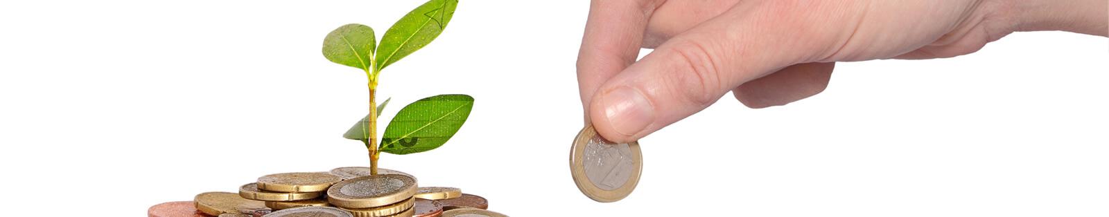 busquedadefinanciemtoparaproyectos